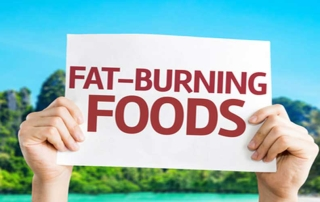 fat burning diet
