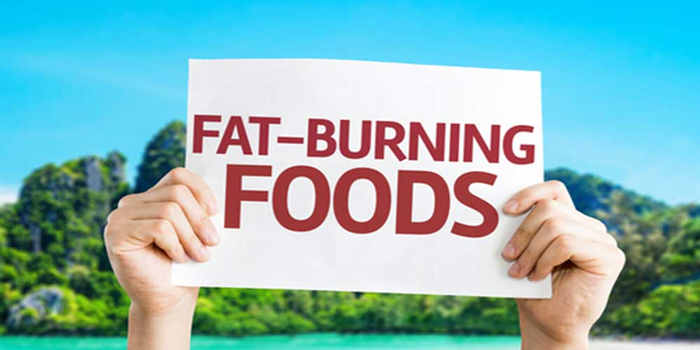 fat burning diet